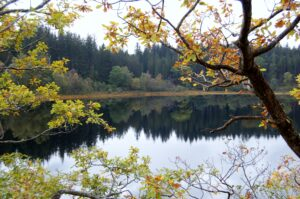 AUTUMN AT LOCH VENACHAR by Karen redfern
