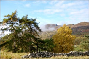 UP THE GLEN by Karen Redfern
