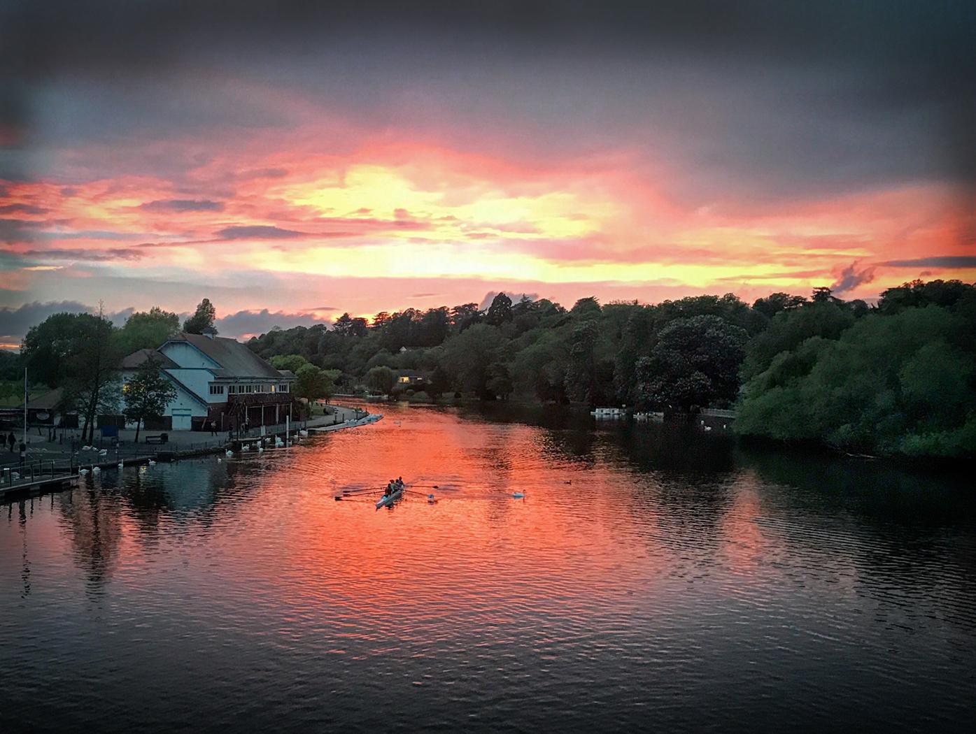 Sunset rowers